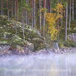 Morning mist at Haukkaj�rvi