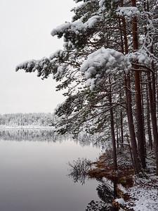 Close to winter
