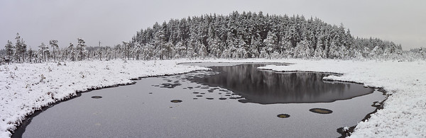 Pond and First Snow. Panorama